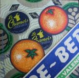 Peau d'Orange N°10 - 2006