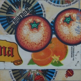 Peau d'Orange N°18 - 2006