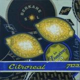 Peau d'Orange N°23 - 2006