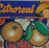 Peau d'Orange N°37 - 2006