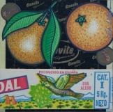 Peau d'Orange N°42 - 2006
