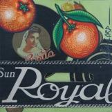 Peau d'Orange N°46 - 2007
