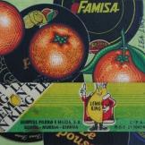 Peau d'Orange N°48 - 2007