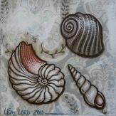 Coquillages 2 - 2010 - 20x20 cm