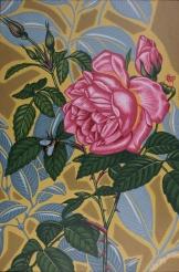 La rose et l'Abeille 1